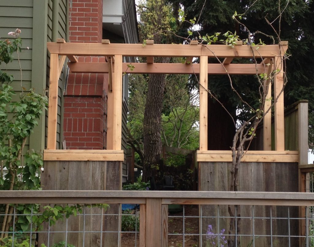 Arbor of new Cedar with fence and gate boards from existing fence.